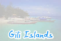 Stay on Gili Island for a couple of days for relaxing , snorkeling or scuba diving